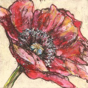Vicky Oldfield - Red Poppy
